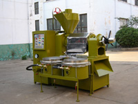 Plam Kenel Oil Press
